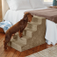 You can now buy a tiny staircase to help your dog get on and off your bed