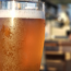 Study finds beer can improve concentration and help combat dementia
